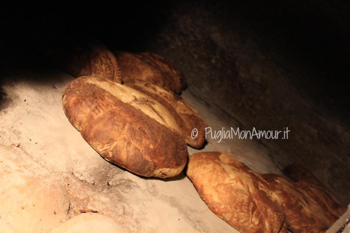Pane e Salute